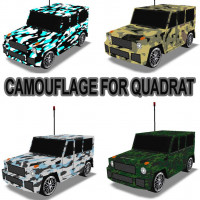 "Camouflage for ""Quadrat"""